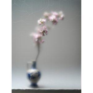 Aubade - fotografie -Chez Freddy -Kunstwerk_Titus Brein-gallery - galerie - haarlem