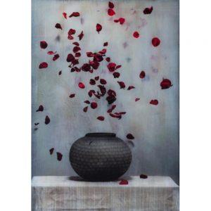 Dutch-Flower-Bomp-XV-photography -Chez Freddy -Art_Titus Brein-gallery - gallery - haarlem